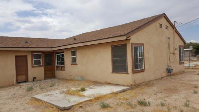 Yermo Single Family Home For Sale: 409 E Williams Street