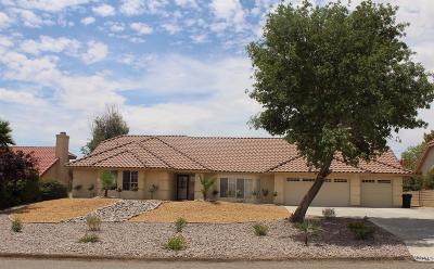 Apple Valley Single Family Home For Sale: 16542 Menahka Road