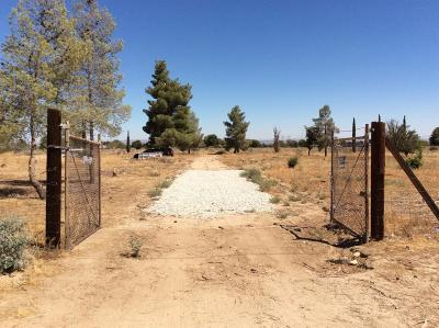 Phelan Residential Lots & Land For Sale: 4648 Rancho Road