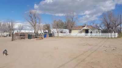 Victorville Single Family Home For Sale: 14461 Cobalt