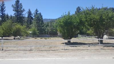 Wrightwood Residential Lots & Land For Sale: 983 Apple Avenue