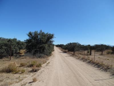 Phelan Residential Lots & Land For Sale: Rochester Road