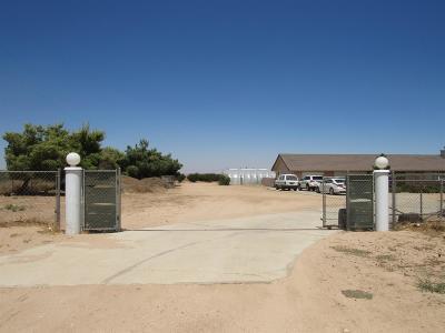 Phelan Single Family Home For Sale: 7026 Phelan Road