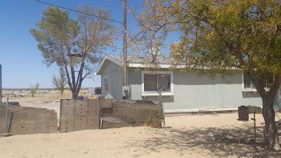 Adelanto Single Family Home For Sale: 11726 Colusa Road