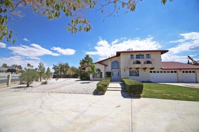 Apple Valley Single Family Home For Sale: 13551 Cronese Road