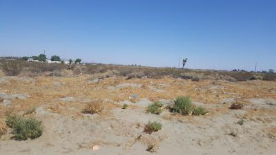 El Mirage Residential Lots & Land For Sale: 19025 Basil Avenue