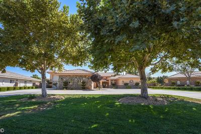 Apple Valley Single Family Home For Sale: 12915 Amador Circle