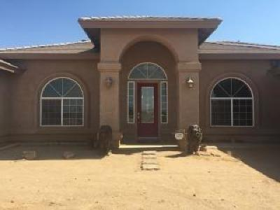 Victorville Single Family Home For Sale: 9559 7th Street