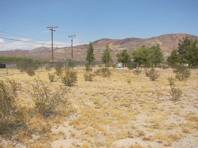 Residential Lots & Land For Sale: 37483 Ghost Town Rd. Road
