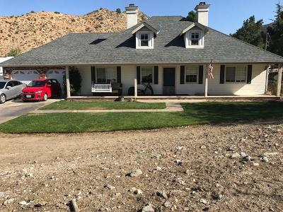 Pinon Hills Single Family Home For Sale: 8221 Green Road