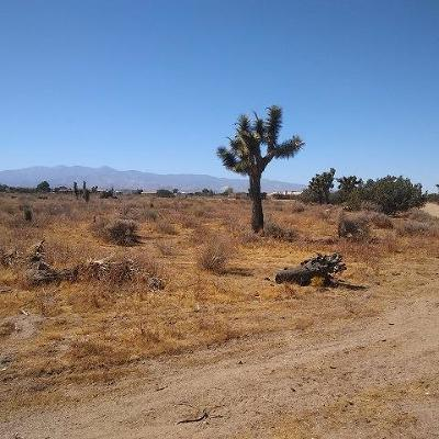 Oak Hills Residential Lots & Land For Sale: 10611 Yucca Terrace Drive