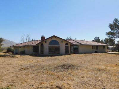 Apple Valley Single Family Home For Sale: 20315 Tussing Ranch Road