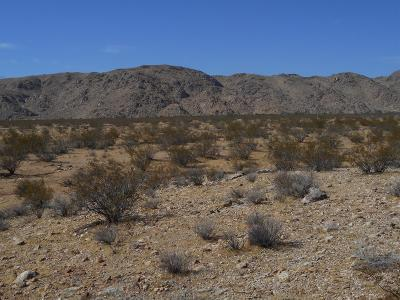 Lucerne Valley Residential Lots & Land For Sale: Cove Road