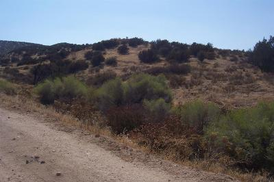 Hesperia Residential Lots & Land For Sale: Bandicoot Trail