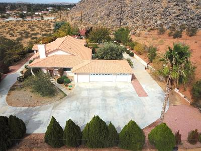 Apple Valley Single Family Home For Sale: 20430 Rancherias Road