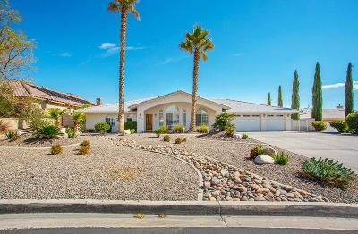 Apple Valley Single Family Home For Sale: 16221 Crown Valley Drive