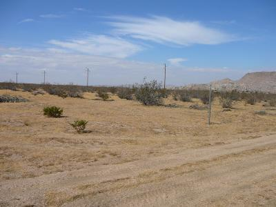 Apple Valley Residential Lots & Land For Sale: Del Oro Road