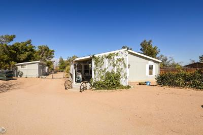 Victorville Single Family Home For Sale: 9590 Gorgonio Road
