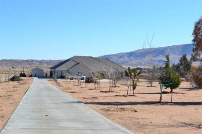 Hesperia Single Family Home For Sale: 9875 Choiceana Avenue