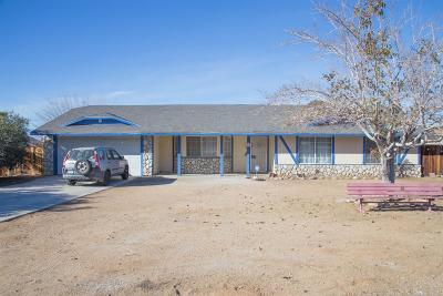 Apple Valley Single Family Home For Sale: 16926 Ouray Road