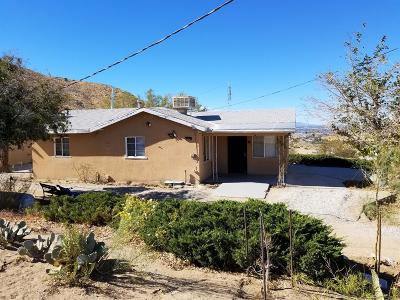 Apple Valley Single Family Home For Sale: 9246 Monte Vista Drive