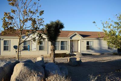 Lucerne Valley Single Family Home For Sale: 32252 Emerald Road