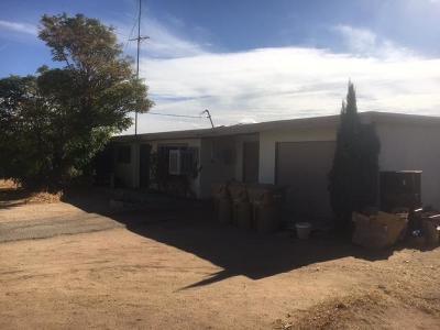 Hesperia Single Family Home For Sale: 17879 Birch Street