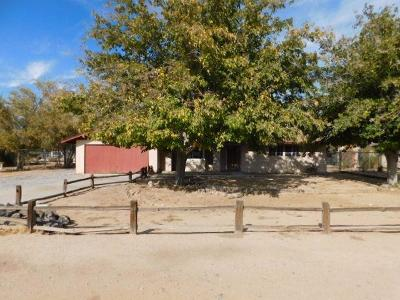 Apple Valley Single Family Home For Sale: 21944 Esaws Road