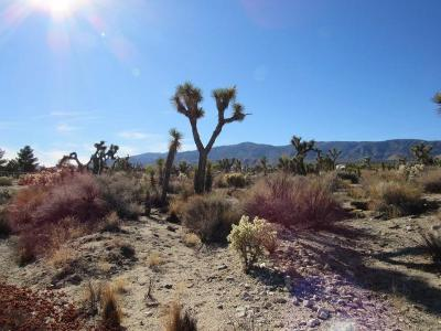 Pinon Hills Residential Lots & Land For Sale: Primavera Road