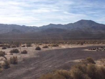 Newberry Springs Residential Lots & Land For Sale: 40429 National Trail Highway