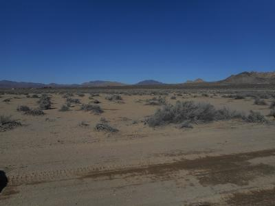 Lucerne Valley Residential Lots & Land For Sale: Rodeo Avenue