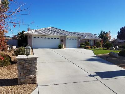 Apple Valley Single Family Home For Sale: 20281 Skyline Ranch Drive