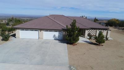 Pinon Hills Single Family Home For Sale: 8935 Spruce Road