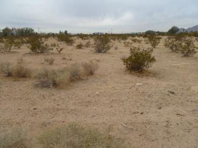 Newberry Springs Residential Lots & Land For Sale: National Trailways Highway