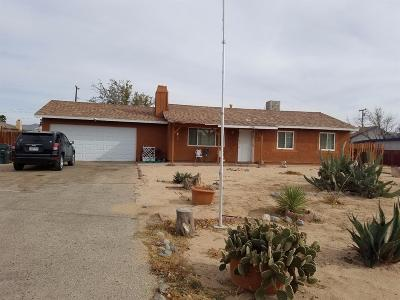 Apple Valley Single Family Home For Sale: 12745 Iroquois Road