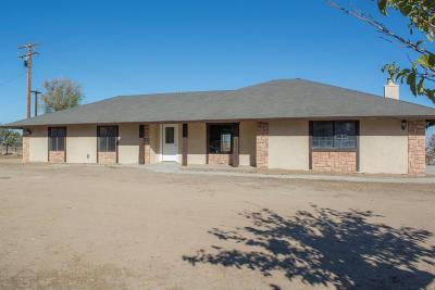 Victorville Single Family Home For Sale: 14150 Maricopa Road