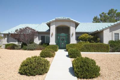 Apple Valley Single Family Home For Sale: 12704 Yorkshire Drive