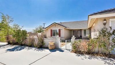 Apple Valley Single Family Home For Sale: 21335 Del Oro Road