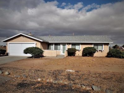 Apple Valley Single Family Home For Sale: 21512 Wren Street
