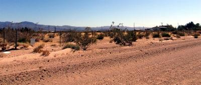 Newberry Springs Residential Lots & Land For Sale: 42629 Bedford Drive