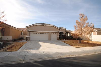 Apple Valley Single Family Home For Sale: 10036 Wilmington Lane