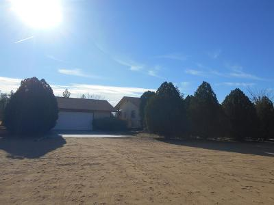 Apple Valley Single Family Home For Sale: 23477 Little Teepee Road