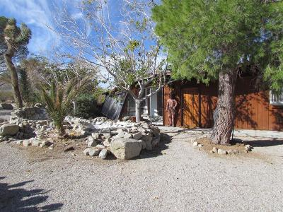 Lucerne Valley Single Family Home For Sale: 9125 Alamo Avenue