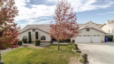 Apple Valley Single Family Home For Sale: 16390 Olalee Road