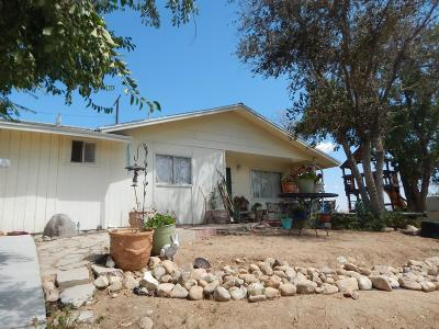 Victorville Single Family Home For Sale: 16584 Forrest Avenue