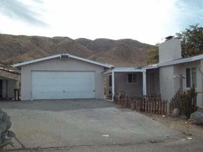 Apple Valley Single Family Home For Sale: 9276 Buena Vista Street