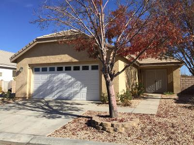 Apple Valley Single Family Home For Sale: 11253 Pleasant Hills Drive