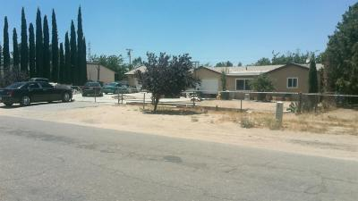 Hesperia Single Family Home For Sale: 10070 Pyrite Avenue