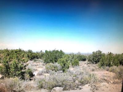 Phelan Residential Lots & Land For Sale: Arizona Road