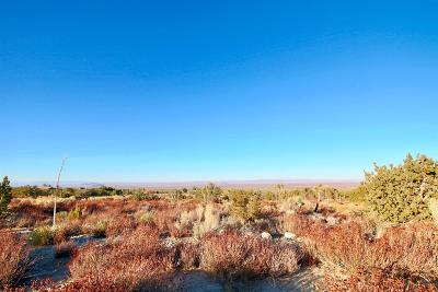 Pinon Hills Residential Lots & Land For Sale: Avenal Street